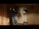 шаповалов   (серия 8)